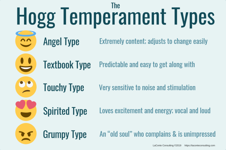 overview of Tracy Hogg's 5 temperament types