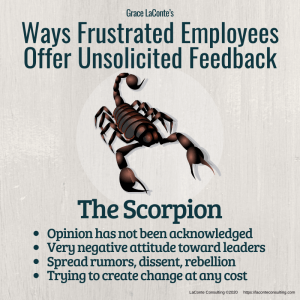 scorpion, frustrated employees, angry employee, injustice, workplace, toxicity, conflict, conflict resolution, strategic risk