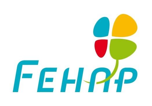 Réunion société FEHAP