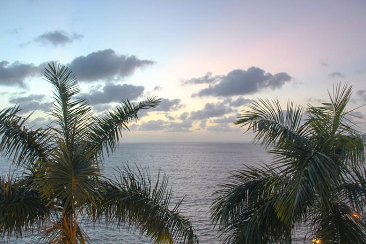 sao luis nordeste bresil palmiers