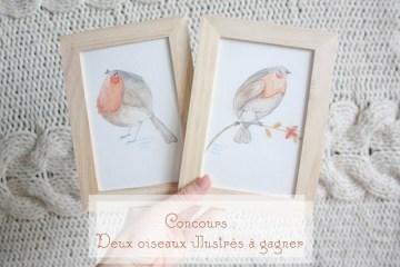 courcours oiseaux illustrés à gagner