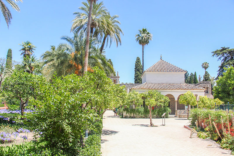 jardins de l'alcazar seville andalousie