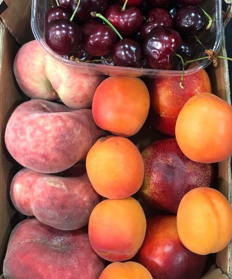 Corbeille de fruits d'été : nectarines, pêches, abricots, cerises