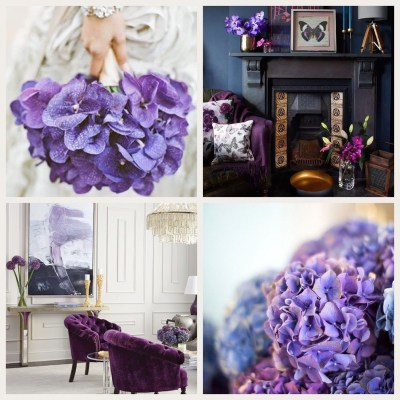 Ultra Violet Home Inspiration