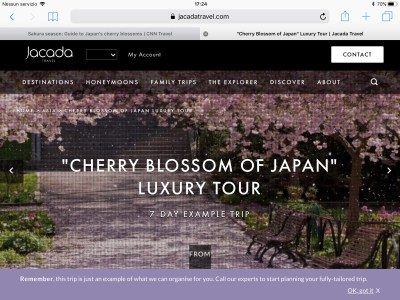 Luxury Tour in Japan