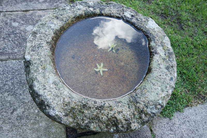 Fuente de piedra en el patio, castillo de San Antón