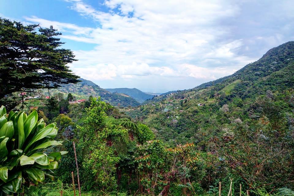 Andes de Colombia
