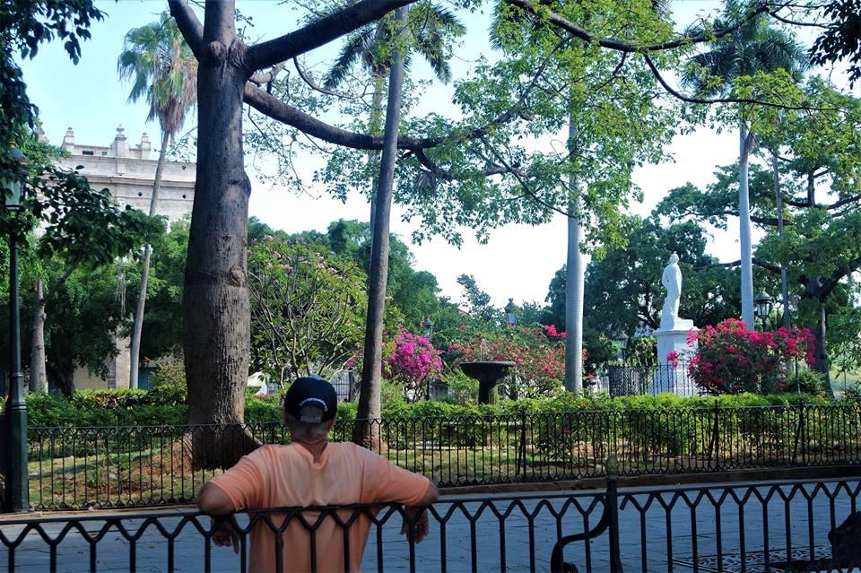 Plaza de Armas, qué ver en La Habana