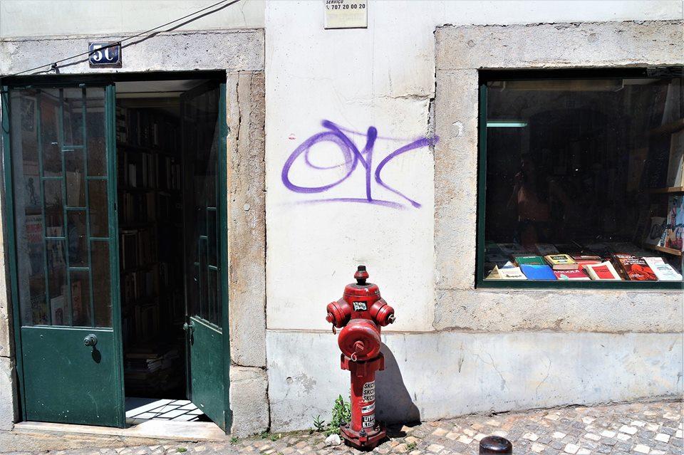 Librería del Barrio Alto, qué hacer en Lisboa