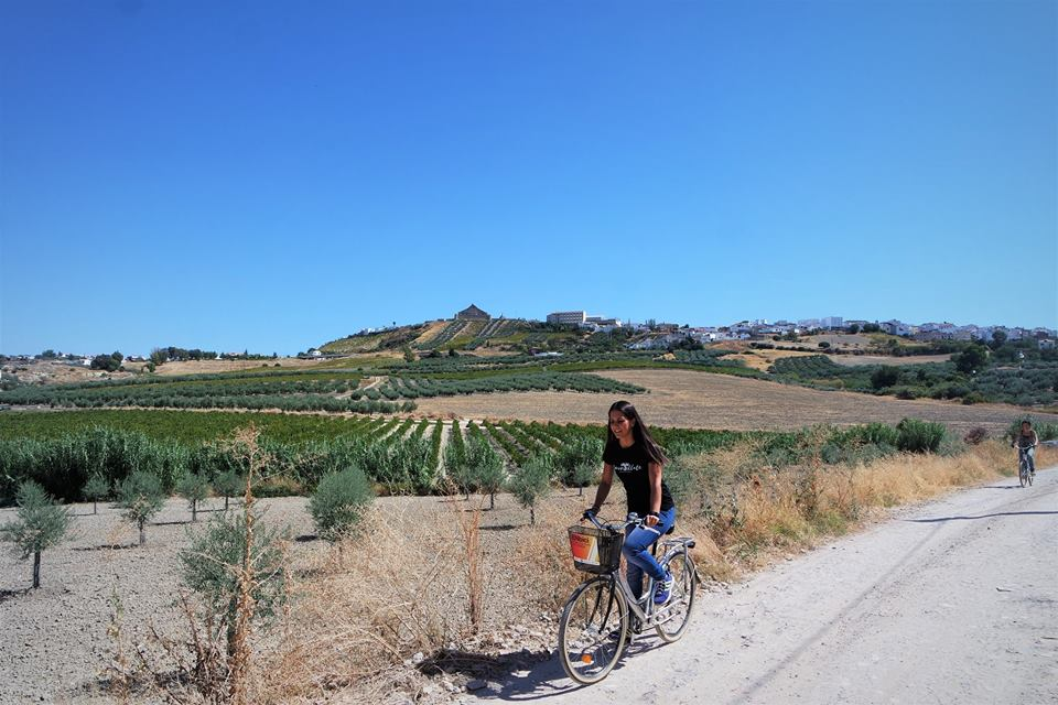 Ruta en bici por Montilla