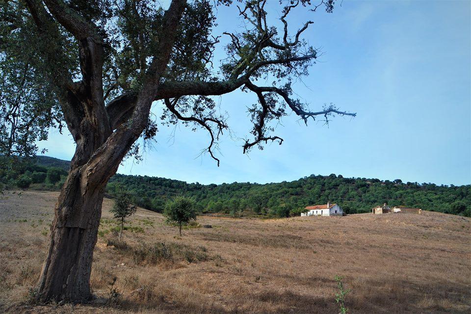 Paisajes del Alentejo, Portugal