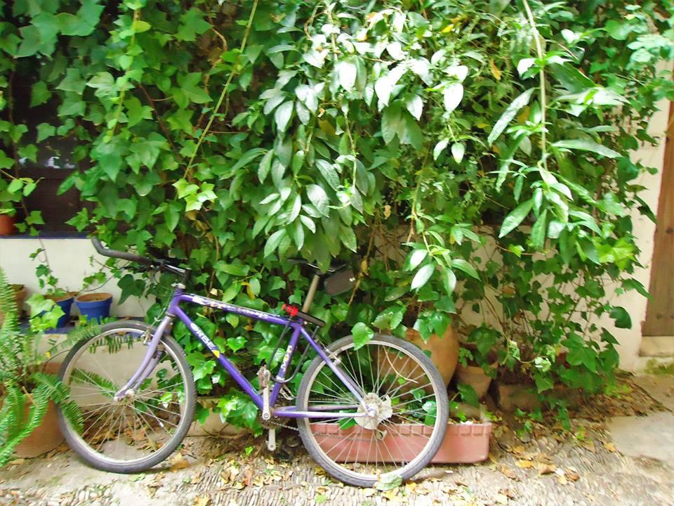 Bicicleta en la Judería, Córdoba