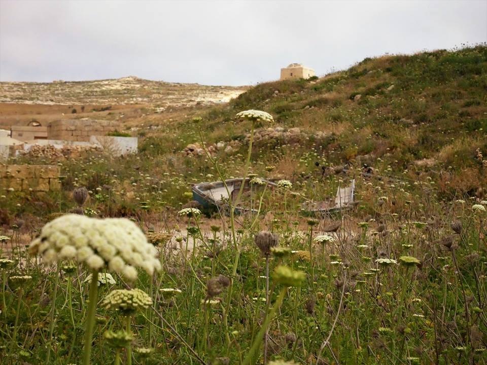 Paisajes rurales de Gozo