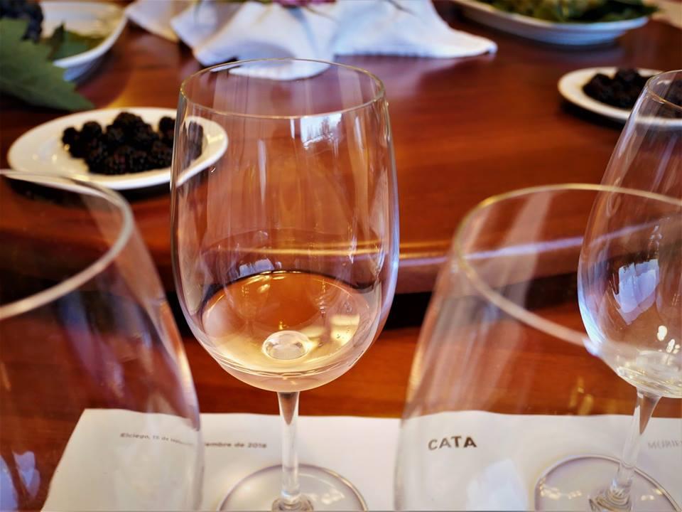 Cata de vinos en la Rioja