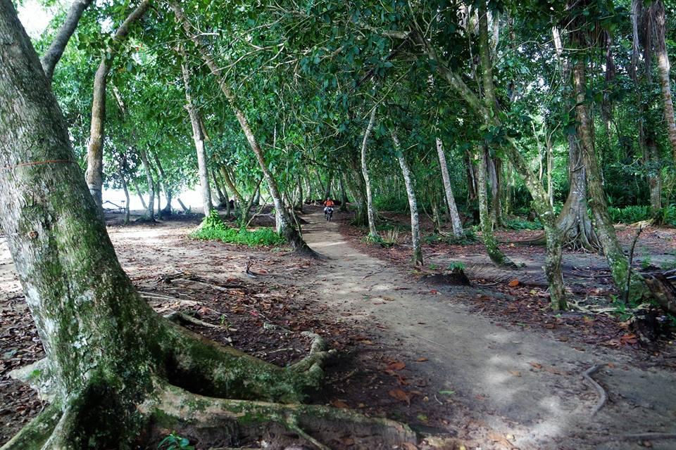 Reserva de Manzanillo