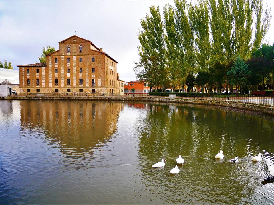 Dársena del Canal de Castilla, Medina de Rioseco