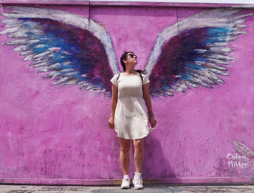 pared alas Los Angeles, ruta de murales y graffitis de Los Angeles
