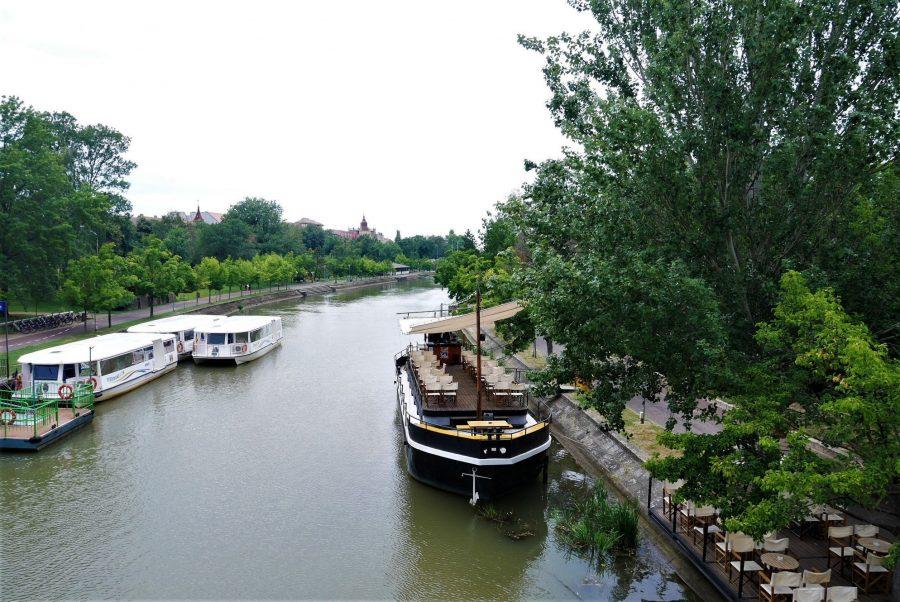 Barcos para el paseo en el río Begej, Timisoara