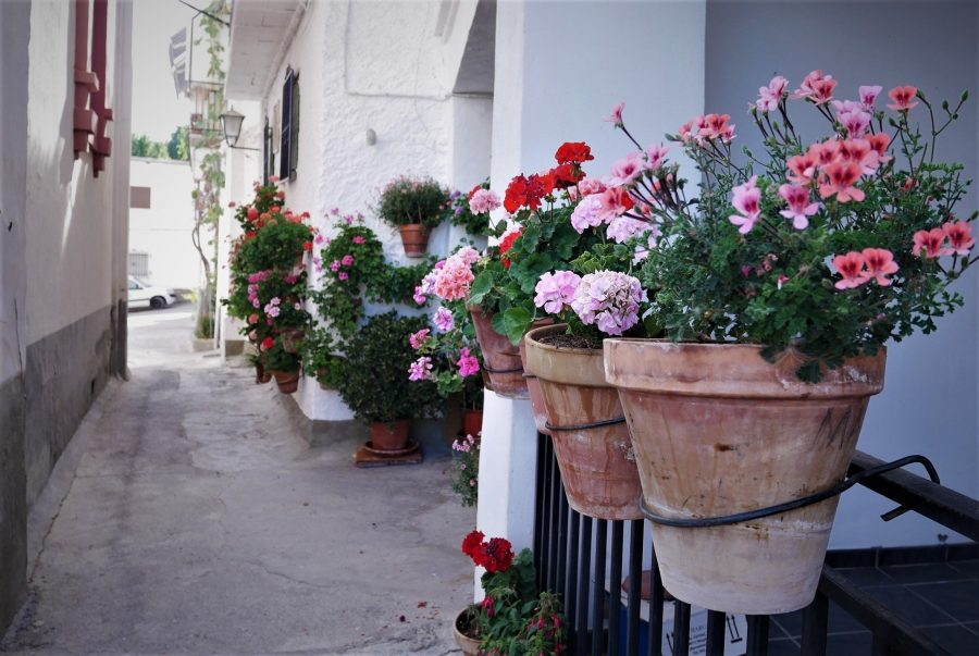Calle de macetas en la Alpujarra