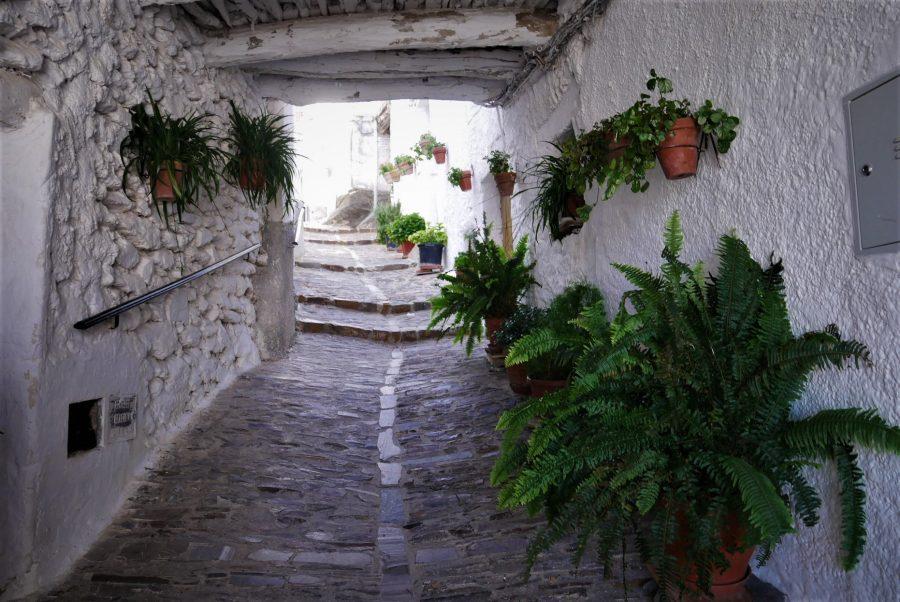 Tinaos típicos de la Alpujarra, Pitres, Granada