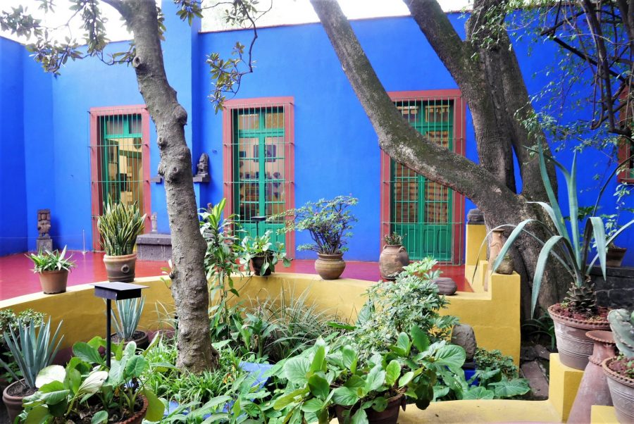 El patio de la Casa Azul