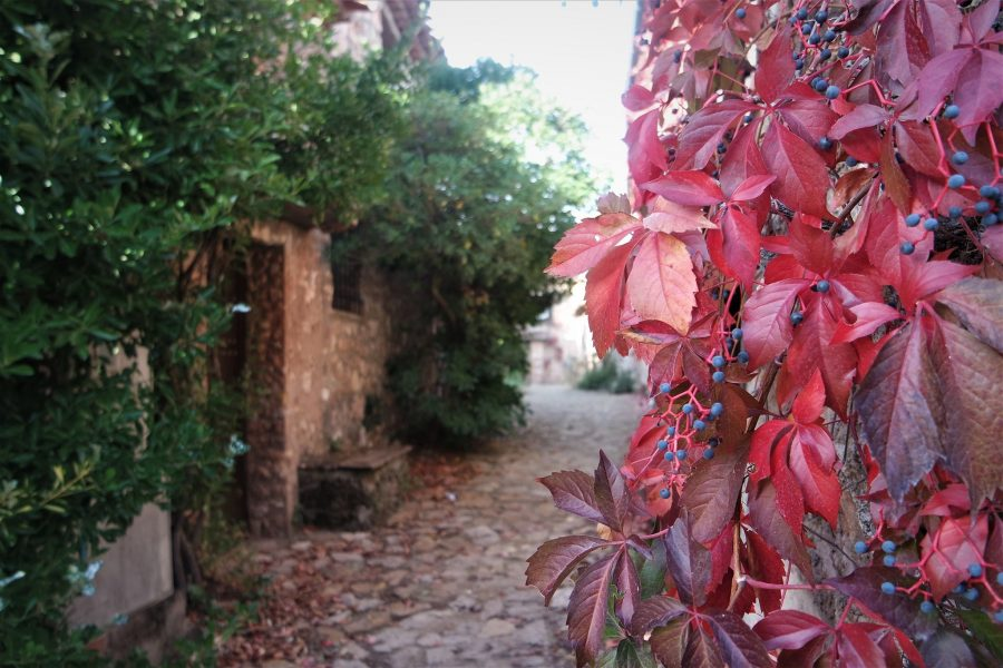Riópar Viejo, Albacete