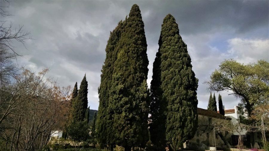 Jardín Nazarí, el Generalife Chico