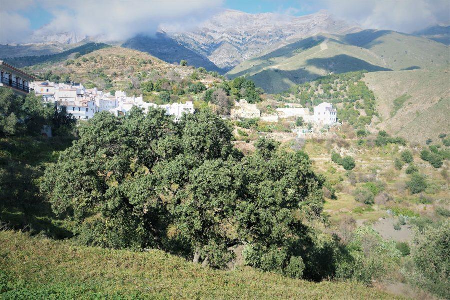 Sedella y la sierra de Tejeda
