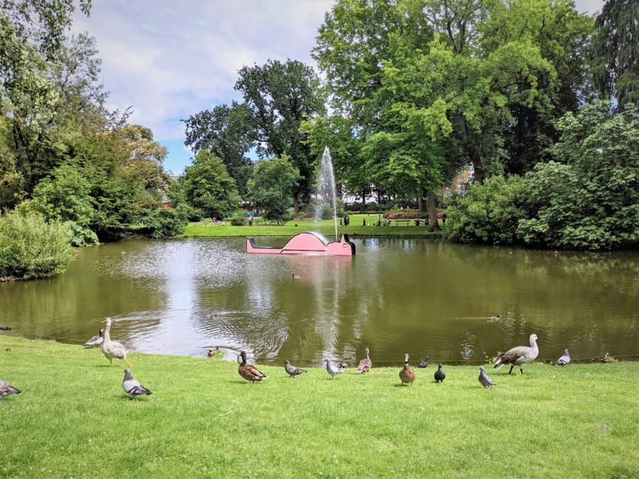 Estanque, Jardín Botánico de Nantes