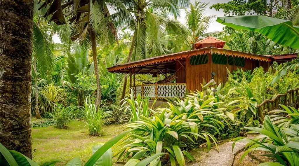 Costa de Papito Jungle Bungalows