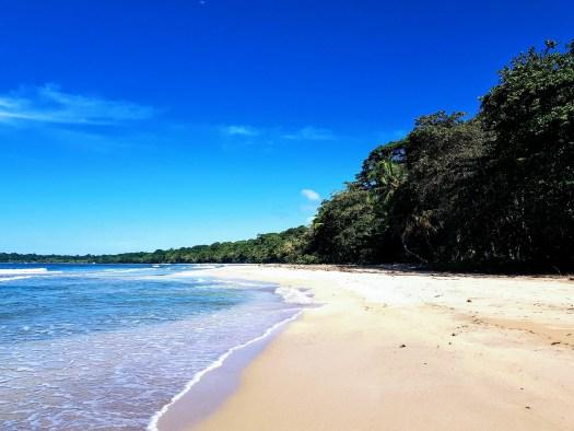 Veranillo del Caribe