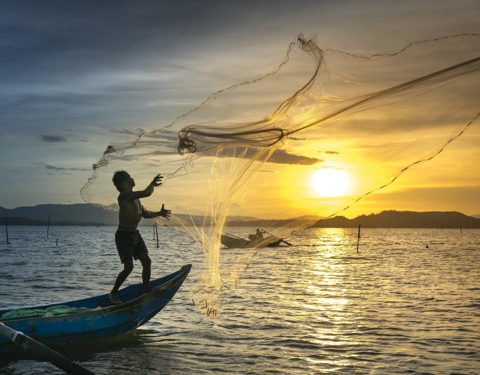 El pez tenía alrededor de tres metros de largo y un peso de 100 libras. La Costeñísima/ Pixabay.