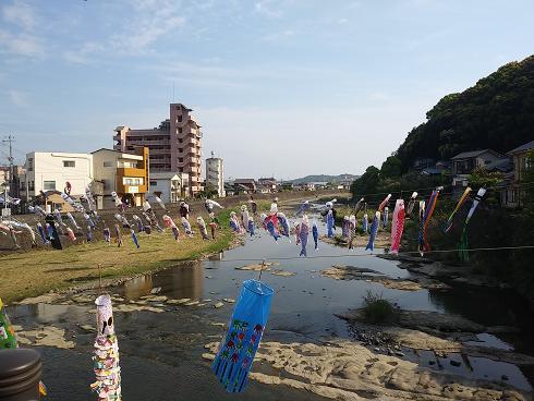 相浦川,出会い,おすすめ,楽しい場所,sasebo,佐世保バーラ・クルーズ,インスタ映え,自然,こいのぼり