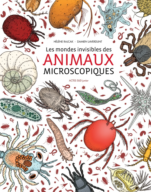 animauxmicroscopiques-actessud.jpg
