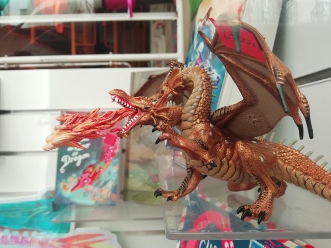 vitrine-dragons-la-courte-echelle (3).jpg