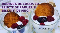 Budinca-de-cocos-cu-fructe-de-padure-si-biscuiti-de-nuci