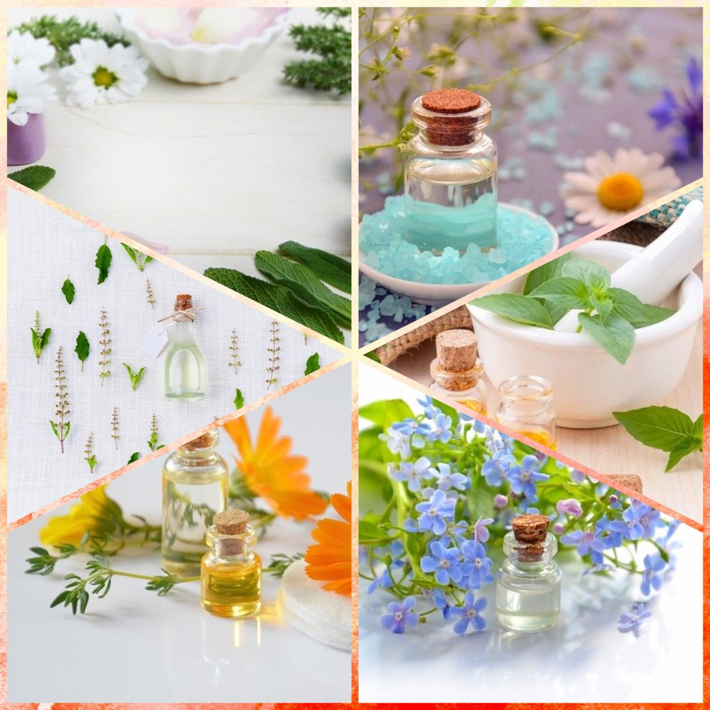 Uleiul de jojoba – sănătate pentru corp