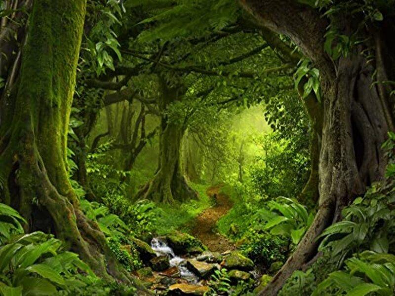 soñar con jungla