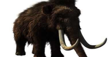 soñar con mamut