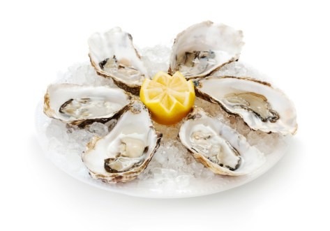 set of fresh oysters in plate with ice and lemon isolated on white background