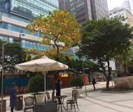 Hong Kong Causeway Bay Lee Gardens FB shop for rent
