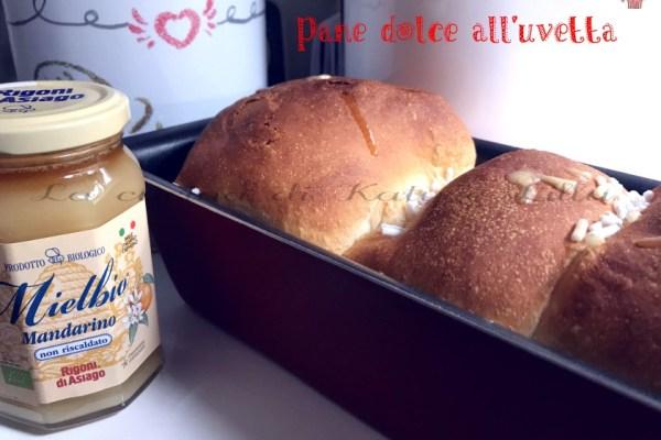 Pane dolce all'uvetta mdp con miele | Ricetta per intolleranti