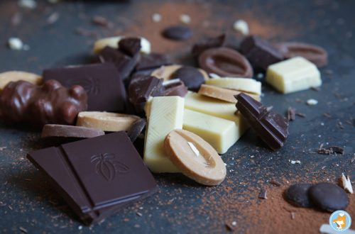 Découvrez tout ce que je sais sur le chocolat