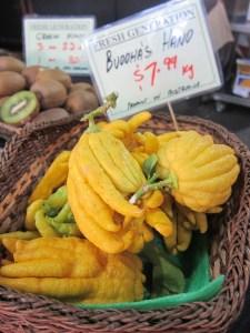 buddhas-hand-citrus medica