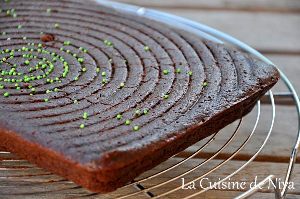 Gâteau au chocolat et graines de chia [vegan]
