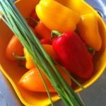 Recette américaine de mini-poivrons farcis sur la Cuisine de Steve
