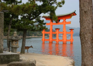 11-Visitor_at_the_Floating_Torii