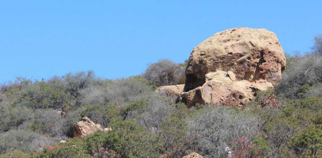 Temescal Skull Rock