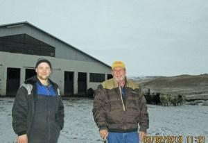 Pat and host, sheep