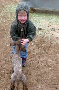 Tiarnan with a new lamb